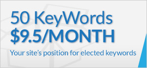 50 keywords for $9.50 a month