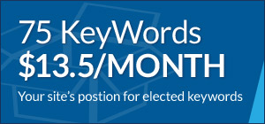 75 keywords for $13.50 a month